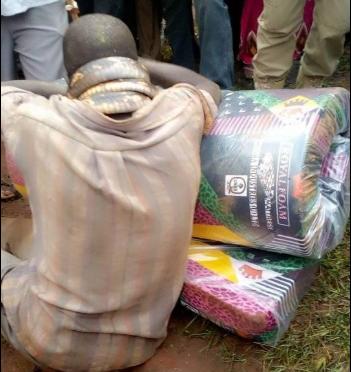 """Man """"arrested"""" by snake after stealing a mattress (photos)"""