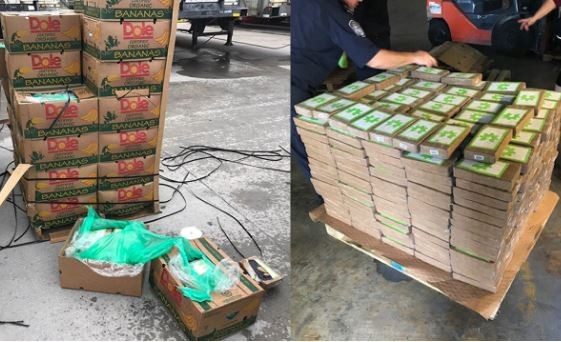 Photos: Police discover?$18M worth of cocaine?disguised as Bananas?being shipped to a?Texas?prison farm