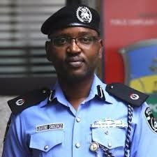 When you compare the rate of murder & rape cases in Nigeria with that of other African countries, you will see that Nigerian police is the best- Yomi Shogunle says
