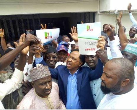Senator Shehu Sani wins APC