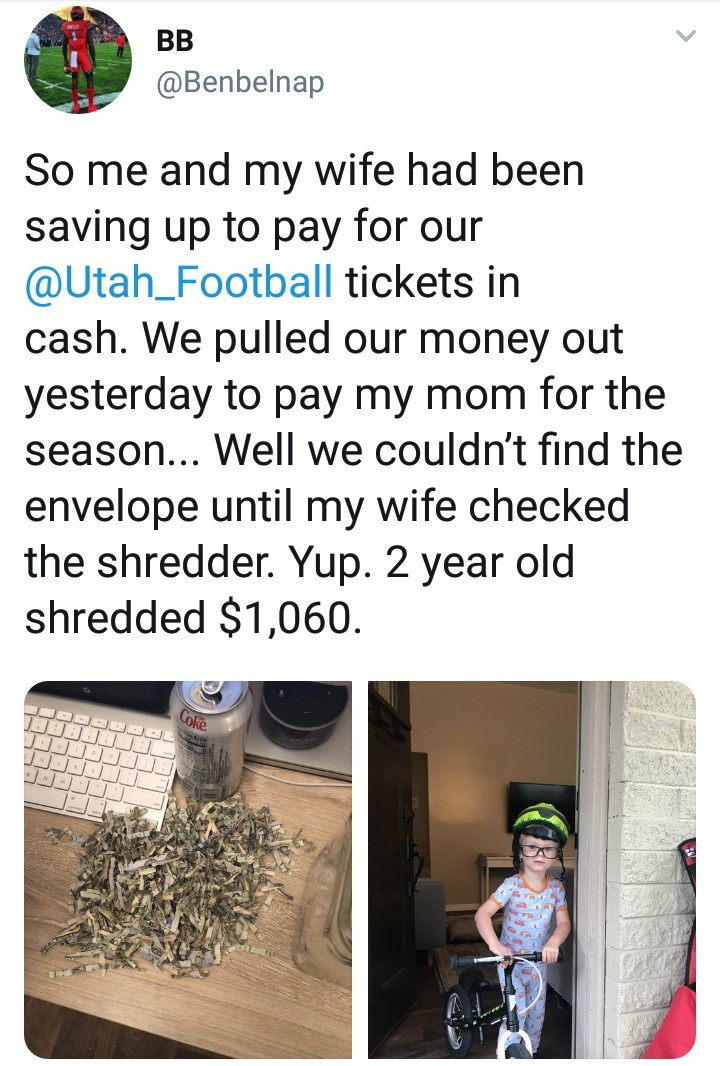 2-year-old shreds his parents savings to pieces (photos)