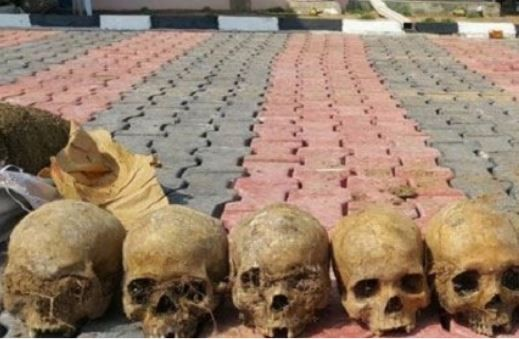 Couple and three other suspects arrested with 11 human skulls in Kwara State (Photo)