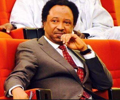 Shehu Sani loses his APC senatorial ticket to?El-Rufai?s aide, Uba Sani