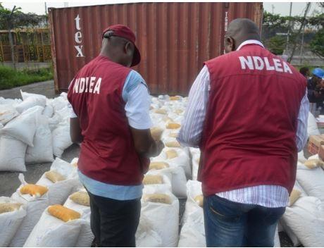 NDLEA arrests 103 suspected drug traffickers in Edo State