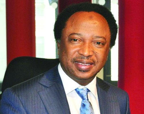 Shehu Sani resigns from APC