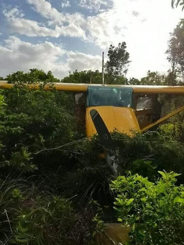Couple miraculously survive plane crash while on their honeymoon (Video/Photos)