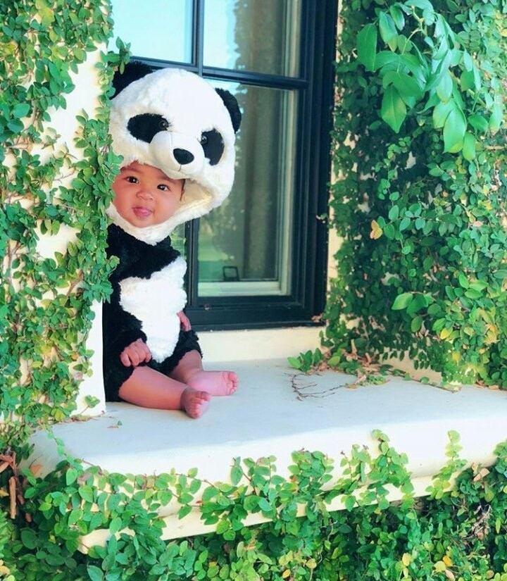 Khloe Kardashian dresses up daughter True as a panda for Halloween (photos)
