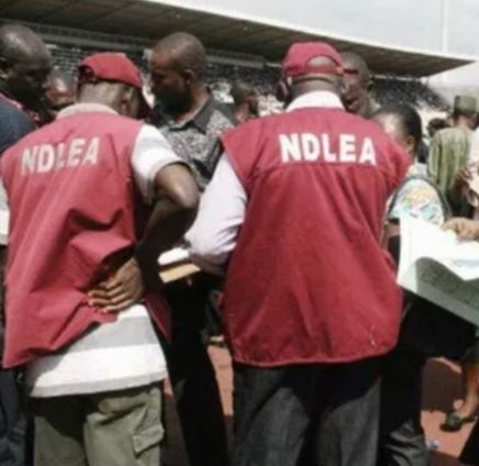 Hit-and-run driver kills NDLEA officer,?Ogbennewo Oluwanifemi in Jigawa State