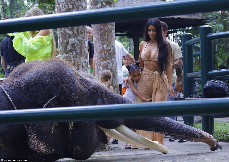 Photos of Bikini-clad Kim and Kourtney Kardashian riding an elephant in Bali (Photos)