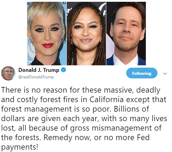 Katy Perry, Kathy Griffin and other stars drag the heck out of President Trump over his