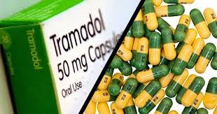 NDLEA uncovers 12 containers with N340 million Tramadol tablets