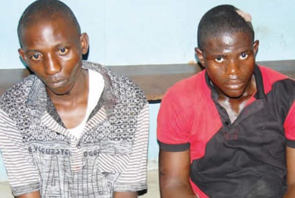 Two suspected cultists arrested for killing a?100 level student over an iPhone in Bayelsa State