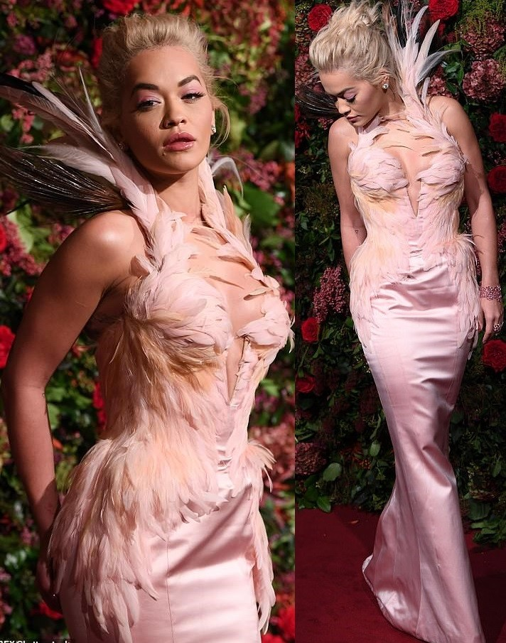 Rita Ora stuns in plunging pink gown emblazoned with feathers as she attends Evening Standard Theatre Awards 2018 (Photos)