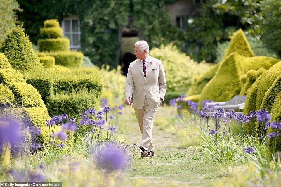Prince Louis grabs Prince Charles