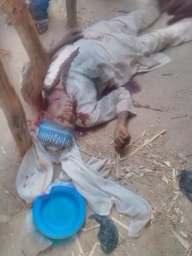 Graphic: Zamfara Civilian JTF kills 5 suspected bandits