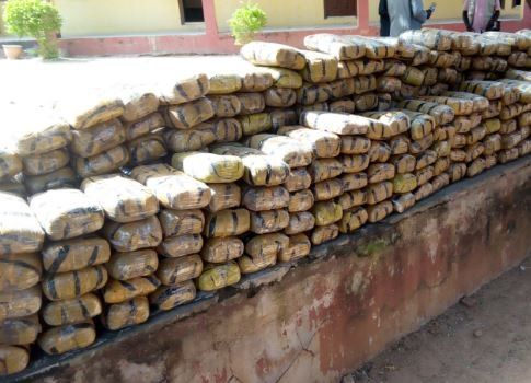 53-year-old man arrested with 218kg of?marijuana in Niger State