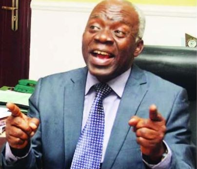 2019: No one can annul elections in Nigeria again ? Femi Falana