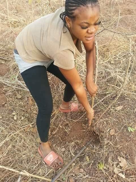 Nigerian wife material searches for husband on Facebook, shares photos of herself in the farm