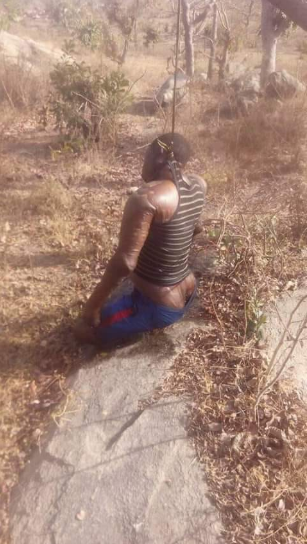 Gaphic Photo: Man found hanging from a tree in apparent suicide in Niger state