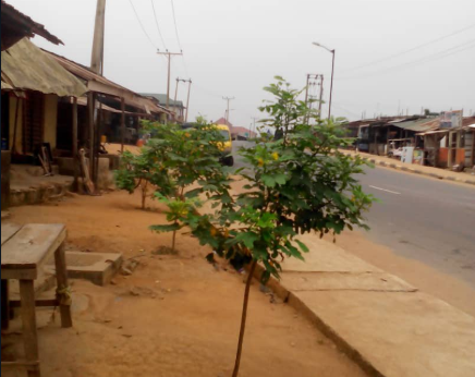 Confusion as mother allegedly kills her baby, commits suicide in Ayobo
