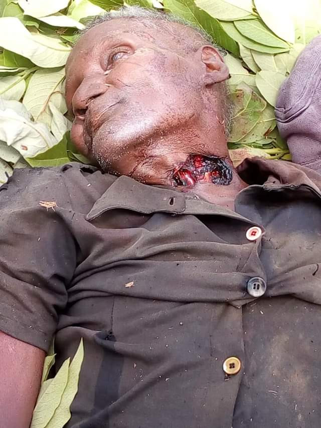 Graphic photo: Suspected herdsmen hack old man to death at his farm in Kaduna