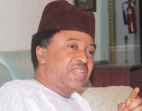 To save the University system, professors should reject INEC job - Senator Shehu Sani