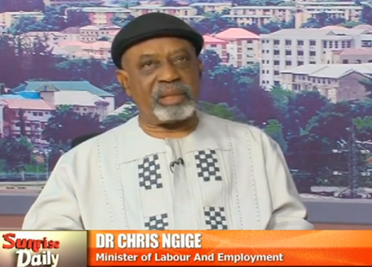We have enough doctors in Nigeria, the ones that want to leave can leave- Chris Ngige