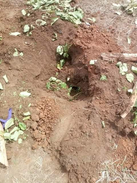 Photo: Unknown persons exhume body of child a day after burial in Niger State