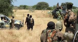 Boko Haram reportedly raze military base in Borno, kill 5 soldiers & steal weapons