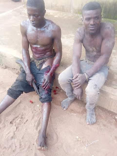 Photos: Vicious robbery gang terrorizing Imo community nabbed after fierce gun battle with vigilante group