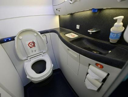 Passenger jet is grounded after foetus is found blocking the toilet ahead of take-off