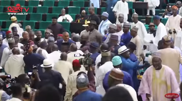 Mace almost snatched as House of Representatives members fight over Minority Leadership position (video)