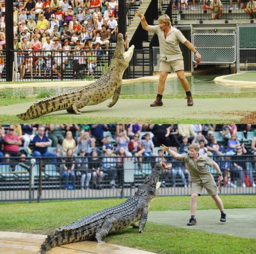 Robert Irwin shares photo of himself feeding same crocodile that his late father, Steve Irwin fed at the same spot 15-years ago