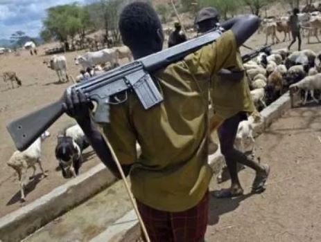 Catholic church confirms attack on priest by herdsmen in Enugu State