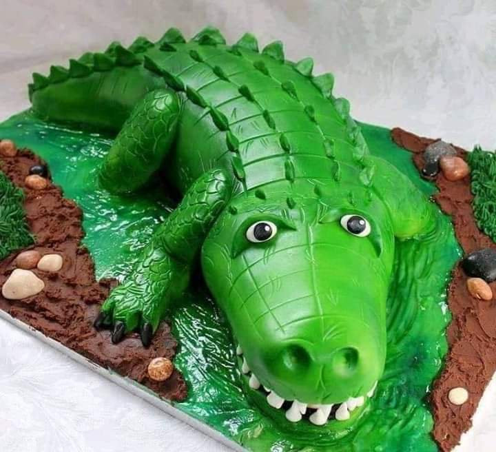 The crocodile cake he ordered vs the monster he got