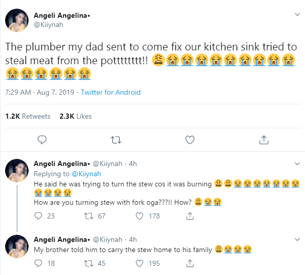 Twitter stories: Plumber caught stealing meat from a Nigerian family