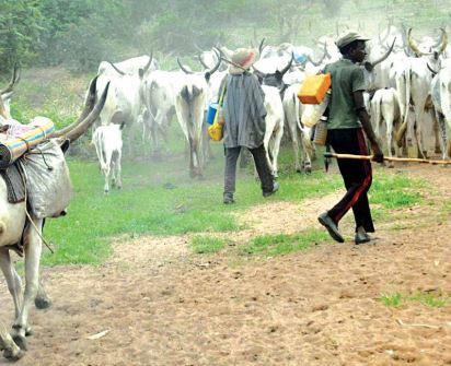 Herdsmen clash in Imo over stolen cows