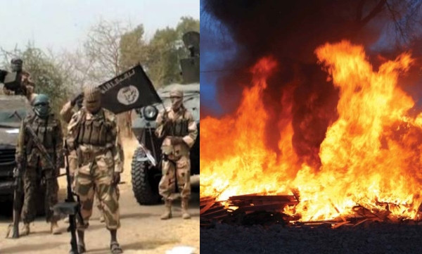 Boko Haram burns down 73 houses in Borno