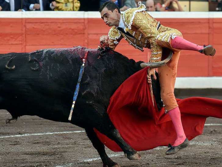 Bullfighter gored in the groin during the Basque culture celebration in Spain (Photos)