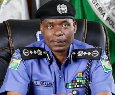 We have arrested 1,154 suspected kidnappers in 2019 - Nigerian Police