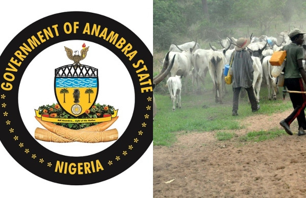 Anambra begins registration of herdsmen