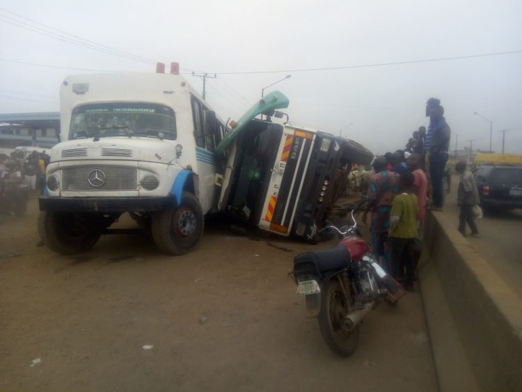 Many cows dead as lorry, passenger bus collide in Lagos (photos)
