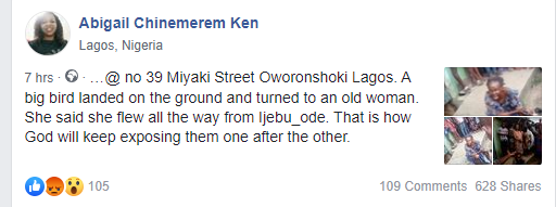 Bird allegedly turns into an old woman at Oworonshoki, Lagos (video)