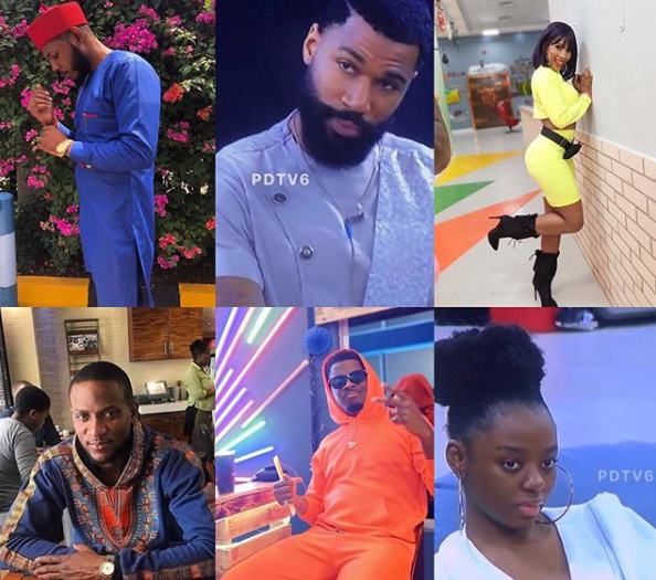 Meet #BBNaija2019 Finalists: Mercy, Mike, Frodd, Omashola, Seyi and?Diane