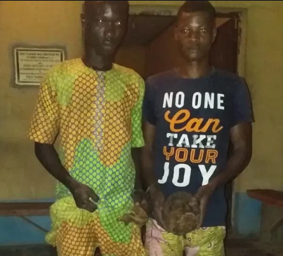Nigerian police arrest two young men for stealing human skull in Ogun State