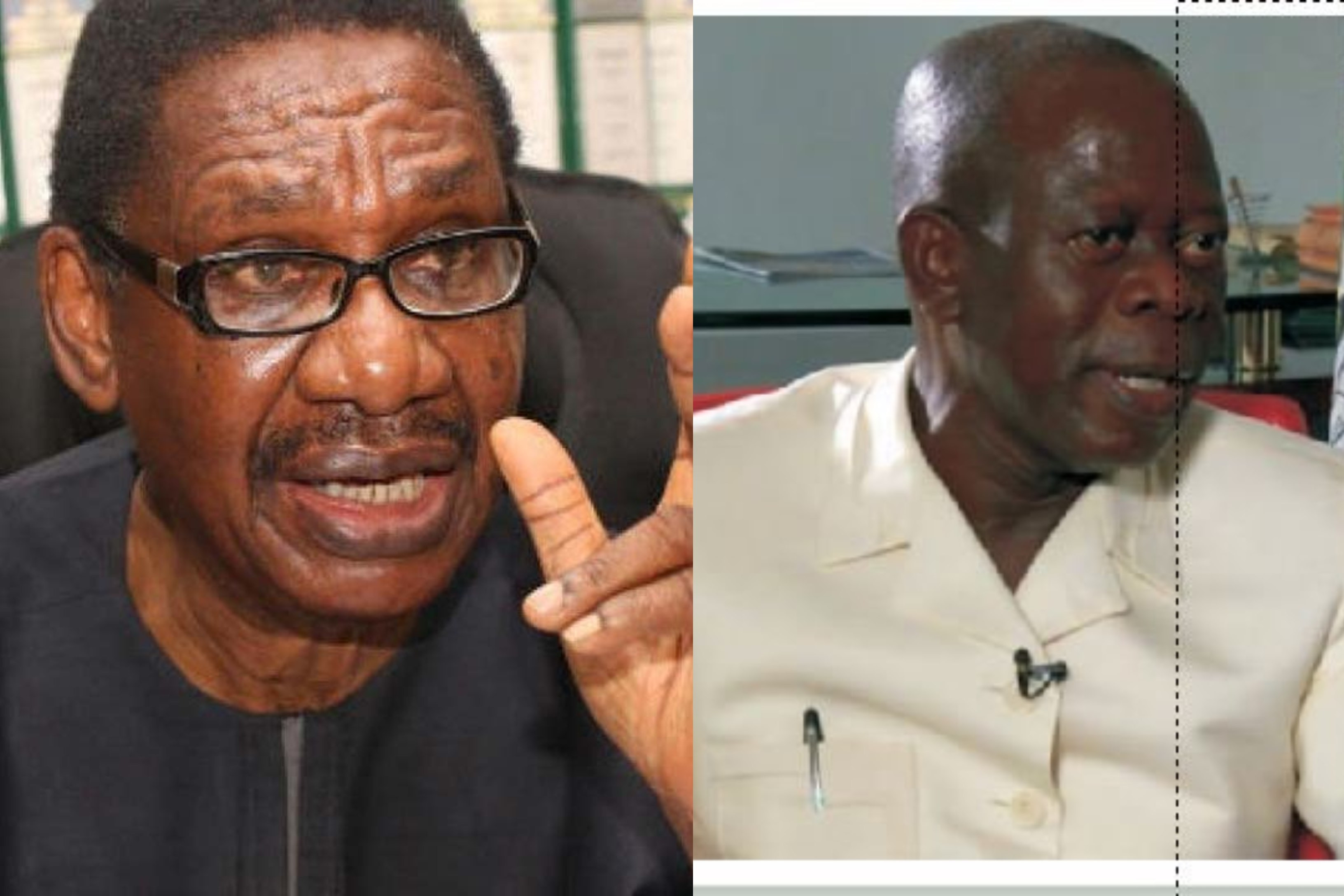 APC may lose more states because of Oshiomhole - Itse Sagay