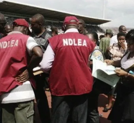 NDLEA arrests alleged notorious drug dealer