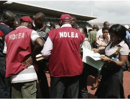 NDLEA re-arrests 56-year-old man with Marijuana just two months after he was released from jail for a similar offence