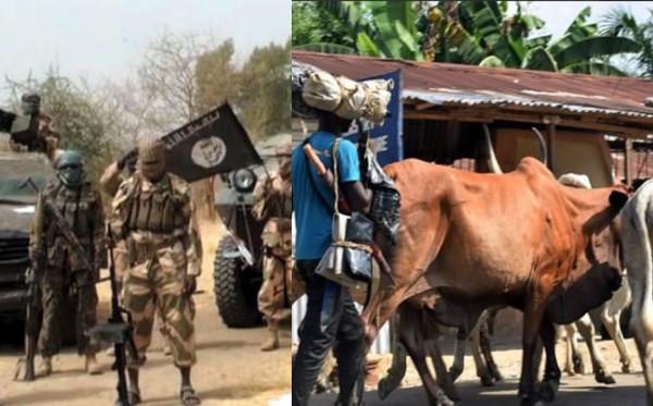 Boko Haram kills 19 Fulani herdsmen