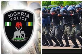 Police arrest man who emerged?from bush and attempted?to board moving plane in Owerri
